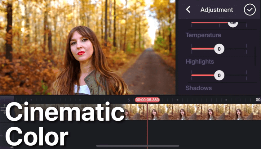 Kinemaster Mod APK for PC